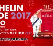 Guía MICHELIN Kyoto Osaka 2017